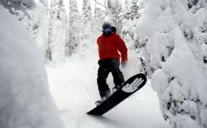 Спуск на сноуборде среди деревьев